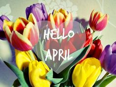 Hello April months april hello april goodbye march welcome april hello april quotes goodbye march quotes