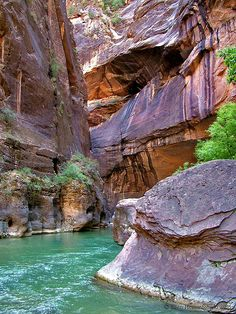 hiking through the virgin river in zion national park