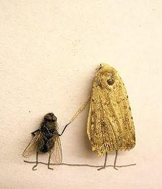 Fun with flies.