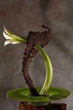 tomas de bruyne bloemsierkunst art floral life3. Black Bedroom Furniture Sets. Home Design Ideas