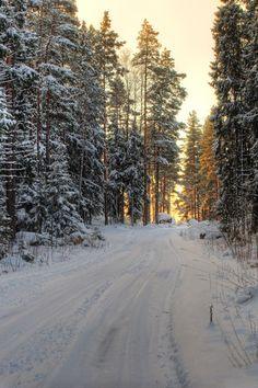 h4ilstorm: Snowy Road