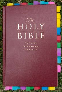 Child Training Bible - Great for quick reference to discipline and training children.