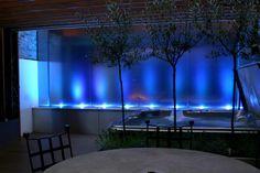 Blue Light !!
