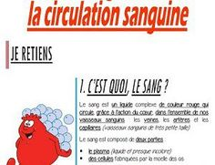 Le sang et la circulation sanguine (Blog) Circulation Sanguine, Science, Singing, Homeschooling, Blog, Anna, Human Body, The Body, Study Notes