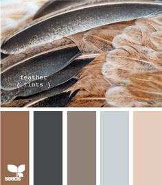 Grays, taupes and blues for my bedroom with surprising litle touches of pink