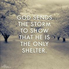 He's the only shelter