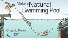 Natural Pools: organic pools for Swimming                                                                                                                                                     More