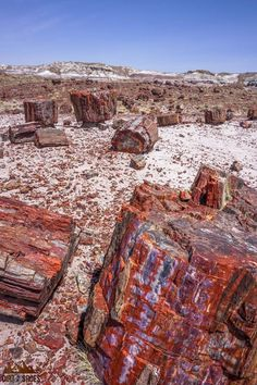 Petrified Forest National Park is one of the most beautiful places in Arizona, and should be on everybody's bucket lists! Planning an itinerary for your family vacation can be a challenge though, that's why I'm sharing this list of 8 things to do in Petri Arizona Road Trip, Arizona Travel, Parc National, National Parks, Places To Travel, Places To See, Travel Destinations, Petrified Forest National Park, The Petrified Forest