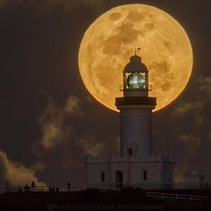 """Super Moon Rising""  Byron Bay NSW Australia 16-10-2016"