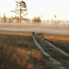 Заколдованные поляEnchanted fields. #vscocam #vsco #vscorussia #nature #wild #field #meadow #landscape #sunrise #sun #fog #morning #livefolk #liveadventure #livegreen #love #lifestyle #flowers #wood