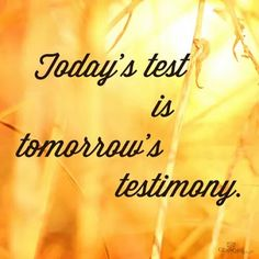 Today's test is tomorrow's testimony.