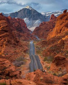 Valley Of Fire State Park, Monument Valley, Nature Adventure, Adventure Travel, Bucket List Travel, Long Way Home, Travel Usa, State Parks, Nature Photography