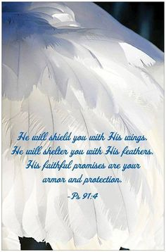 """PSALM 91:4 - He will cover you with his feathers, and under his wings you will find refuge; His faithfulness will be your shield and rampart. Psalm 91:11 - For He will command His Angels concerning you, to guard you in all your ways; they will lift you up in their hands, so that you do not strike your foot against a stone. You will trample the great lion and the serpent. """"Because he loves me,"""" says the Lord, """"I will rescue him, I will protect him""""."""