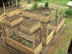 Raised Garden Beds Layout Design #RaisedGarden #raisedbedslayout