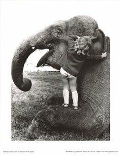 Amazon.com: John Drysdale (An Elephant Never Forgets) Art Poster Print Masterprint MasterPoster Print, 11x14: Home & Kitchen