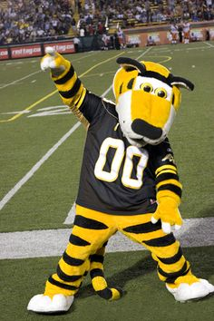Oskee Wee Wee! on Pinterest | Tigers, Tim Hortons and Argo