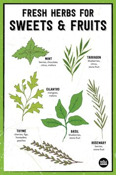 Fresh Herbs are great with so many things! Try adding mint, tarragon, cilantro, thyme, basil or rosemary to your favorite desserts or pair them with fruit.