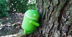 """5 Apps """"verdes"""" para cuidar el medio ambiente http://www.multimediagratis.com/tecnologia-2/aplicaciones-ecologicas-para-smartphones.htm"""