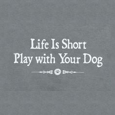 Your life is short and your dog's life is even shorter