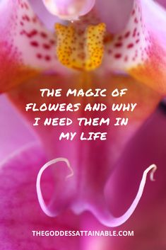 I don't know about you, but when I am feeling insecure and/or ashamed about my vulva situation (for whatever reason), comparing them to flowers makes me feel like a goddess. Feeling Insecure, Taken For Granted, The Last Time, I Don T Know, Archetypes, My World, Vulnerability, My Life, Fragrance