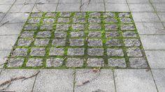 Square of Granite sets in larger Paving Outdoor Paving, Outdoor Flooring, Flooring 101, Stone Walkway, Paving Stones, Landscape Materials, Landscape Design, Paving Texture, Paving Pattern