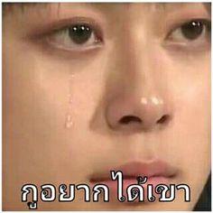 มึงอย่าร้องไห้ Me Too Meme, Meme Faces, Lol, Humor, Memes, Funny, Celebrities, Faces, Tired Funny