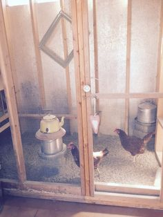 The Beehive Cottage: Visiting With The Chickens!