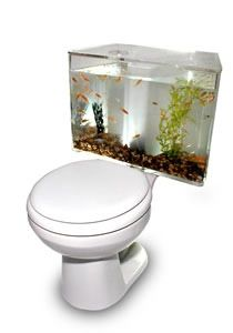 Designed by Oliver Beckert, the Aquariass is an $1,100 aquarium that works with real live fish that you can add on to your toilet. The aquarium doesn't actually share a tank with the toilet, but you can guarantee there will be at least one visitor to your home who will be afraid to flush for fear of killing all the poor fish inside. And do you really want to have deal with that?    Not sure I'm loving it....its just odd.