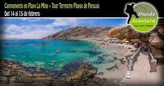 ! Ya es hora de playa ! Después de un año de mucha montaña, nos damos una escapada a una de las playas más hermosas del Sur: Playa la Mina en Paracas. Un campamento que no puedes perderte. Te esperamos! Toda la información en este enlace --> https://www.facebook.com/events/306821739528496/
