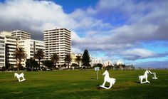 Five-Horses-on-sea-Point-Lawn4