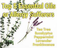 Springtime can send you into a coughing sneezing fit that can lower your quality of life.Here we give 10 Natural Remedies for Spring Allergies for relief. Natural Hemroid Remedies, Natural Add Remedies, Natural Remedies For Migraines, Natural Treatments, Natural Healing, Natural Allergy Remedies, Natural Oil, Natural Foods, Allergies