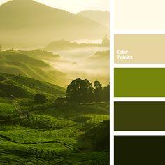 colors of dawn, dark green, light green, marsh, off green, off yellow, selection of color, selection of colors, shades of green, warm shades, yellow beige.