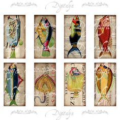 Des poissons colorés Weird 2-30 différents poissons colorés étranges sur parchemin vieux papier de livres de science du XVIe siècle.