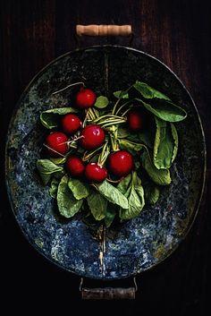 radish by Agnieszka Krach
