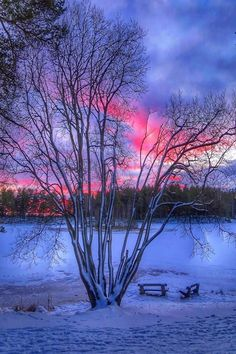 Pretty sunset maysan2611