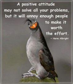 a positive attitude