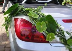 One of the best 2013 collection of Wedding Car Flower Decoration Gallery from Bridal Requirements Collection. Wedding Car Decorations, Flower Decorations, Green Wedding, Wedding Flowers, Deco Cars, Bridal Car, Wedding Rentals, Wedding Inspiration, Flower Arrangements