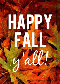 Fall is here & we couldn't be happier! holiday, seasons, texa, fall yall, fall time, happi fall, quot, autumn leav, favorit season