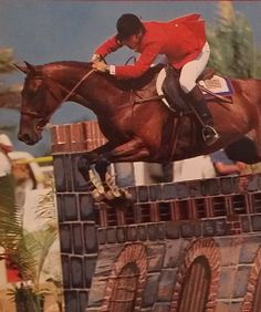 Allegro & Norman Dello Joio at the 1979 Pan-Am Games in Puerto Rico. Photo by Alix Coleman. Equestrian Chic, Tally Ho, Athletic Events, Cute Ponies, All About Horses, Hunter Jumper, Show Jumping, Source Of Inspiration, Dressage