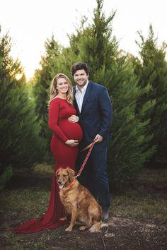 maternity Christmas card with dog