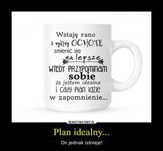 Plan idealny... – On jednak istnieje!