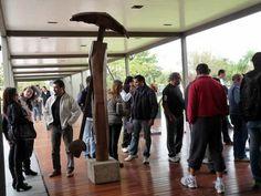 Visita de turistas tucumanos Pergola, Outdoor Structures, Random, Outdoor Decor, Home Decor, Outdoor Pergola, Interior Design, Home Interiors, Arbors