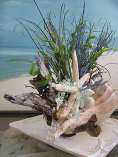 Whelk Shell Driftwood CenterpieceCoastal Home by CeShoreTreasures