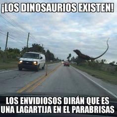 Dinosaurios la prueba de que existen