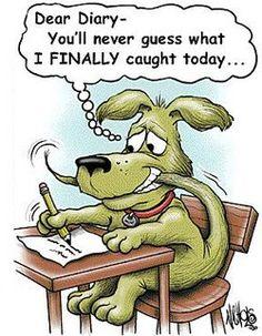 Chasing tail… #dog