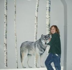 My granddaughter, Lacey, loves wolves and she wanted to decorate her bedroom in a wolf theme. This page includes ideas for painting and how to...