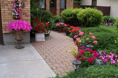 Colourful front walkway.