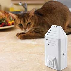 Emits a high-pitched alarm to train cats and dogs to stay off countertops, etc.