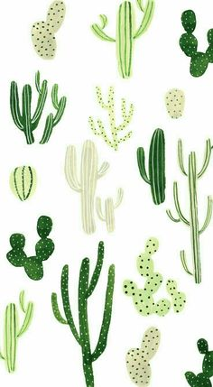 Cactus Wallpaper w/ different types of Cactus in different shades of green . This cute, fun, wallpaper is adorable and can really tie a whole look together! Tumblr Wallpaper, Iphone Background Wallpaper, Animal Wallpaper, Colorful Wallpaper, Aesthetic Iphone Wallpaper, Cool Wallpaper, Mobile Wallpaper, Pattern Wallpaper, Aesthetic Wallpapers