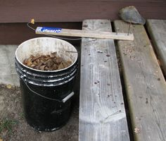 Ideas to make your cottage experience more fun Homemade Mouse Traps, Best Mouse Trap, Getting Rid Of Mice, Walking The Plank, Garden Insects, Wooden Walking Sticks, Pet Chickens, Dry Leaf, Pest Control